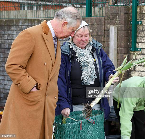 Prince Charles Prince of Wales tours the vegetable garden as he visits Stebonheath Primary School during a day of engagements in Wales on February 26...