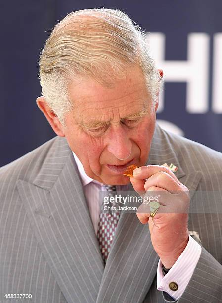 Prince Charles Prince of Wales views a 'Day of the Dead' themed exhibition at the Museo Dolores Olmedo on November 3 2014 in Mexico City Mexico The...