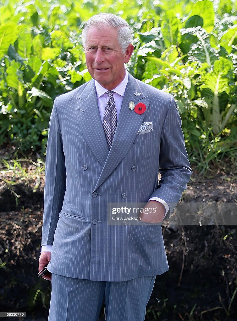 Prince Charles Prince of Wales visits a 'Chinampas' or Floating Farm just outside Mexico City on November 3 2014 in Mexico CityMexico The Royal...