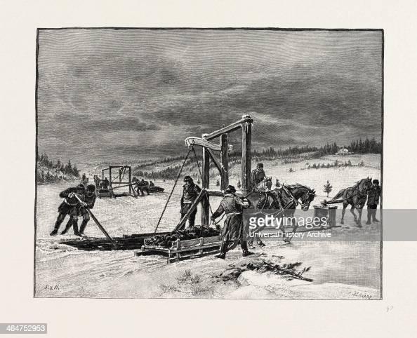 Prince Edward Island Digging Mussel Mud Canada Nineteenth Century Engraving