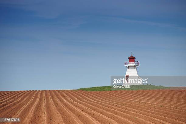 Prince Edward Island lighthouse and potato field.
