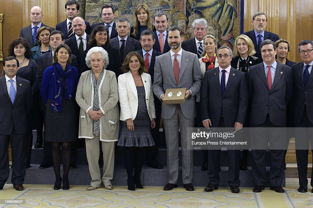 Prince Felipe of Spain attends audiences to Spanish olympic delegation and receives Madrid bid files at Zarzuela Palace on January 17, 2013 in Madrid, Spain. Madrid is one of the three candidate cities to host the 2020 Olympics Games.