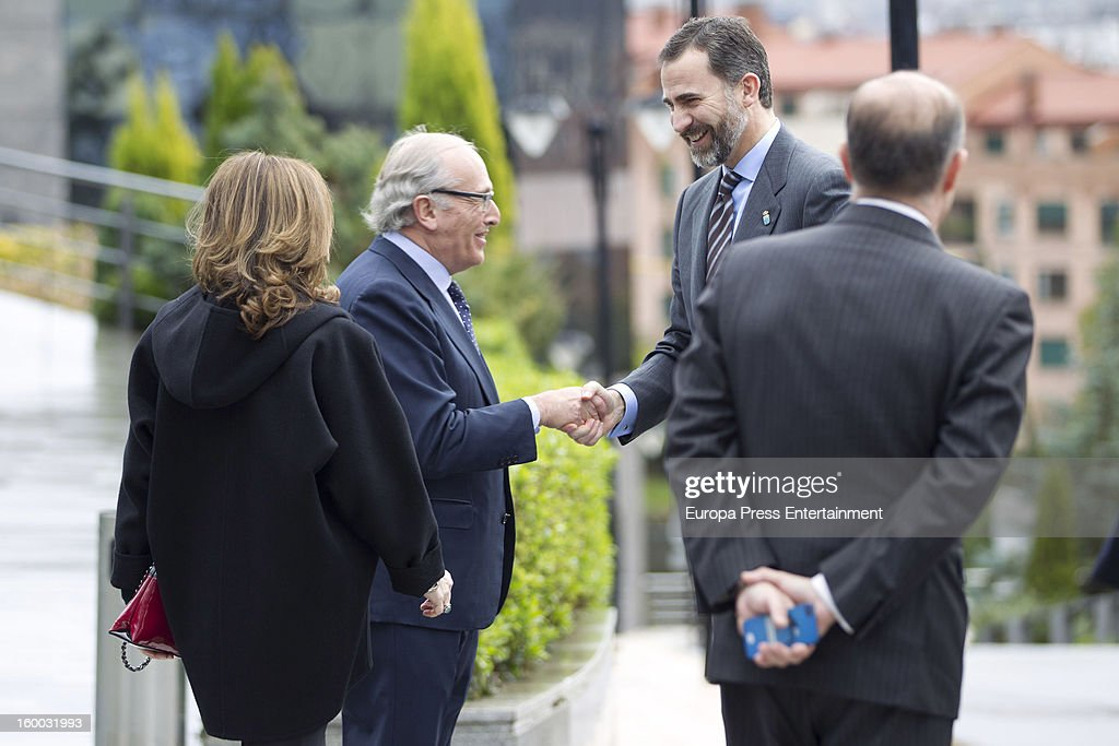 Prince Felipe of Spain (2R) is seen visiting 'Eyes Institute Fernandez Vega' on January 24, 2013 in Oviedo, Spain.