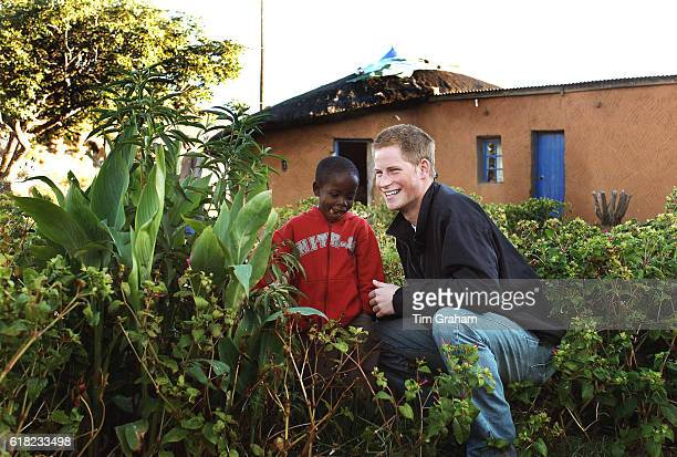 APRIL 28 2006*** Prince Harry and Mutsu Potsane inspect the Peach Tree that they planted in March 2004 in the grounds of the Mants'ase children's...