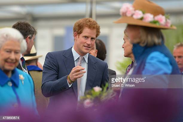 Prince Harry attends the annual Chelsea Flower show at Royal Hospital Chelsea on May 18 2015 in London England