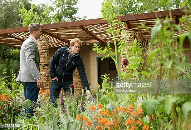 Prince Harry chats to designer Matt Keightley as he visits the Sentebale 'Hope In Vunerability' Garden during the annual Chelsea Flower show at Royal...