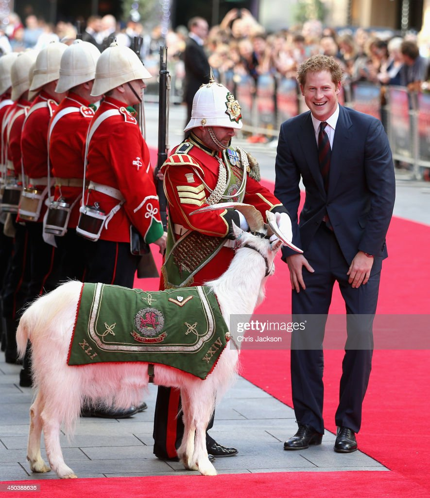 <a gi-track='captionPersonalityLinkClicked' href=/galleries/search?phrase=Prince+Harry&family=editorial&specificpeople=178173 ng-click='$event.stopPropagation()'>Prince Harry</a> chats to Sgt Major Mark Jackson who is looking after the Regimental Mascot of the 3rd Battalion Welsh Guards 'Shenkin' as he arrives for the 50th anniversary screening of Zulu at Odeon Leicester Square on June 10, 2014 in London, England.