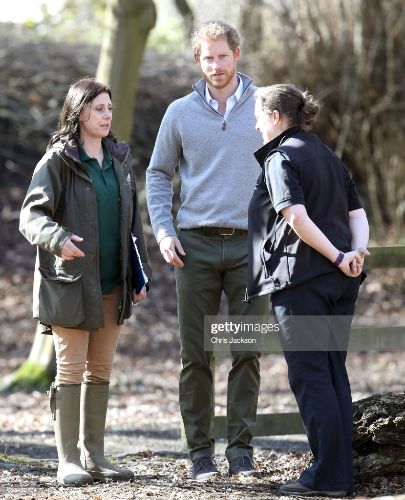 prince-harry-is-introduced-to-helen-robertson-field-studies-centre-a-picture-id653492724