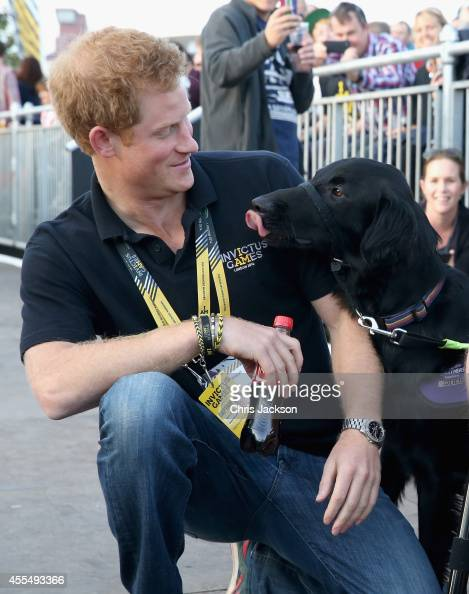 Prince Harry meets Jonathan Flint and his assistance dog at the Invictus Games Closing Ceremony during the Invictus Games at Queen Elizabeth park on...