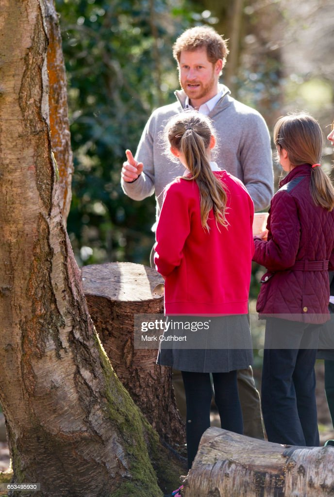 prince-harry-meets-local-children-taking-part-in-education-during-a-picture-id653495930