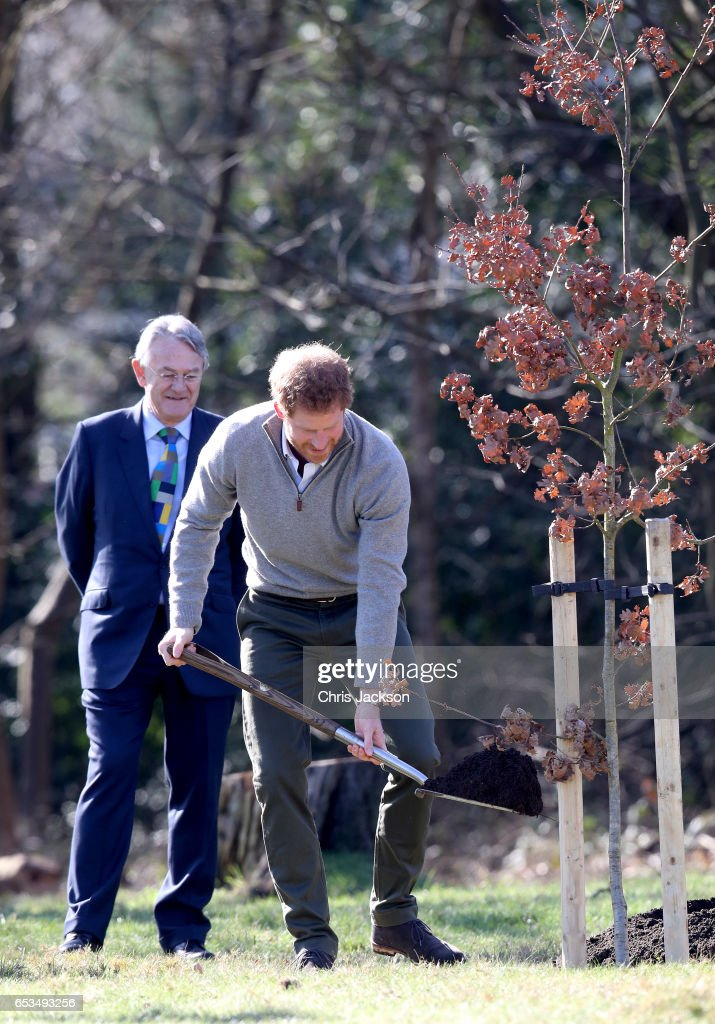 prince-harry-plants-a-tree-during-a-visit-to-the-epping-forest-to-picture-id653493256