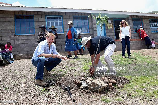 Prince Harry plants a tree with Prince Seeiso of Lesotho during a visit to a herd boy night school constructed by Sentebale on December 8 2014 in...