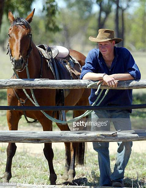 Prince Harry rides his horse 'Guardsman' with the team mustering herd bulls at Tooloombilla in Queensland 27 November 2003 AFP PHOTO/WPA POOL/GARETH...