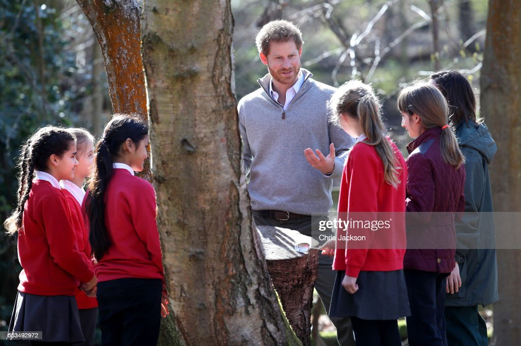 prince-harry-speaks-with-school-children-during-a-visit-to-epping-to-picture-id653492972