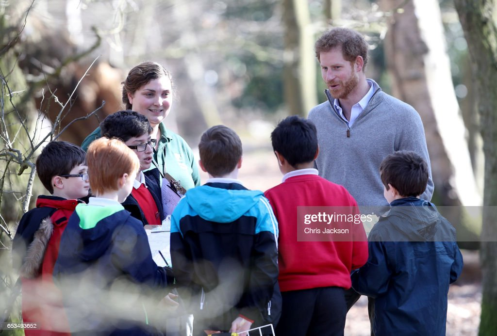 prince-harry-speaks-with-school-children-during-a-visit-to-epping-to-picture-id653493652