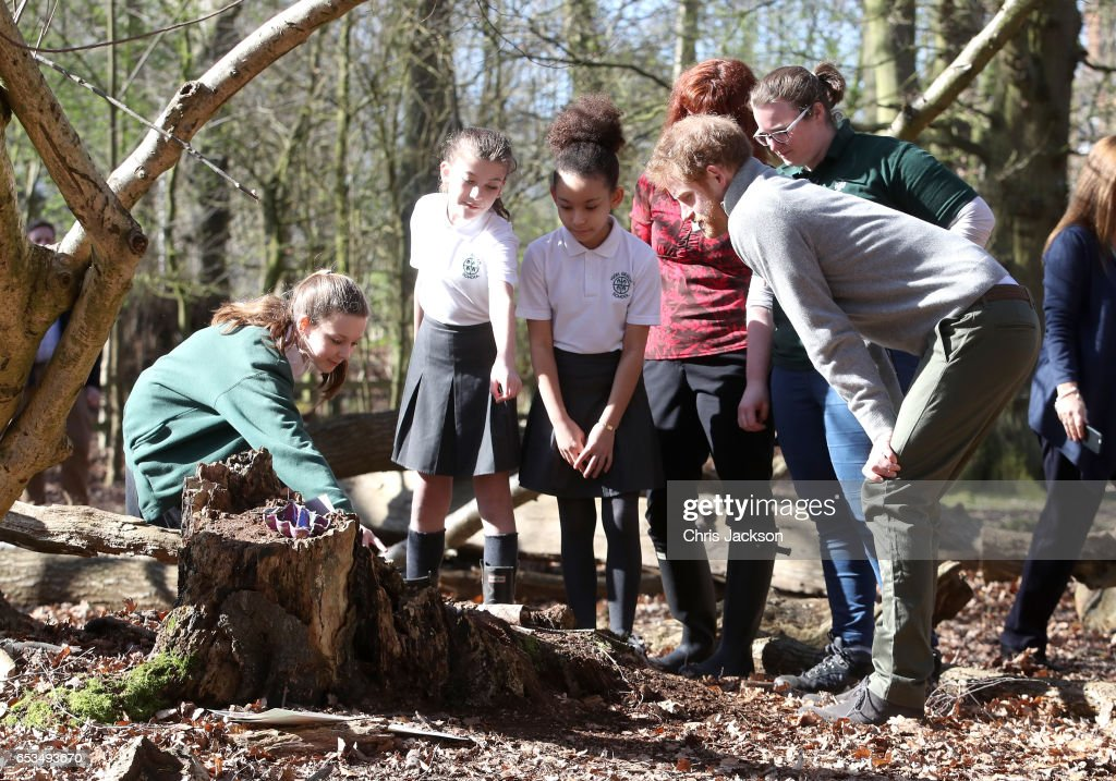 prince-harry-speaks-with-school-children-during-a-visit-to-epping-to-picture-id653493670