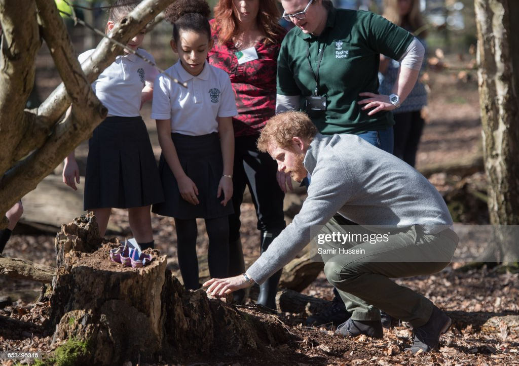 prince-harry-talks-to-school-children-during-a-visit-to-epping-forest-picture-id653496346