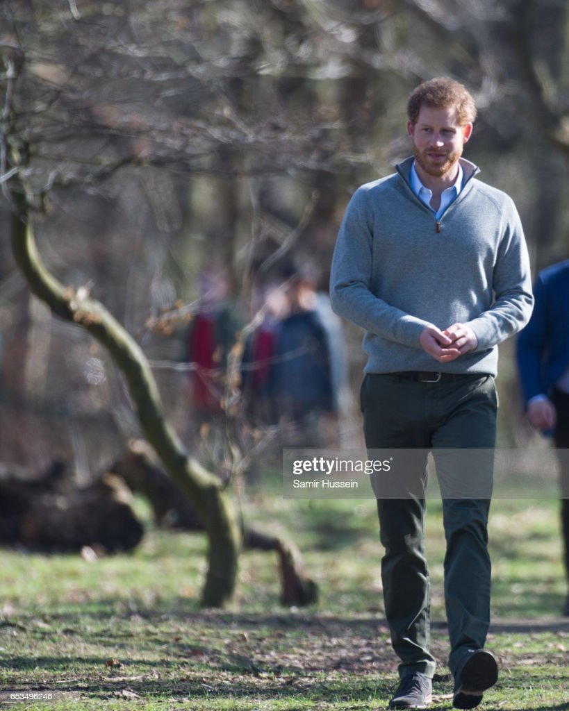prince-harry-visits-epping-forest-to-view-the-wood-pasture-project-picture-id653496246