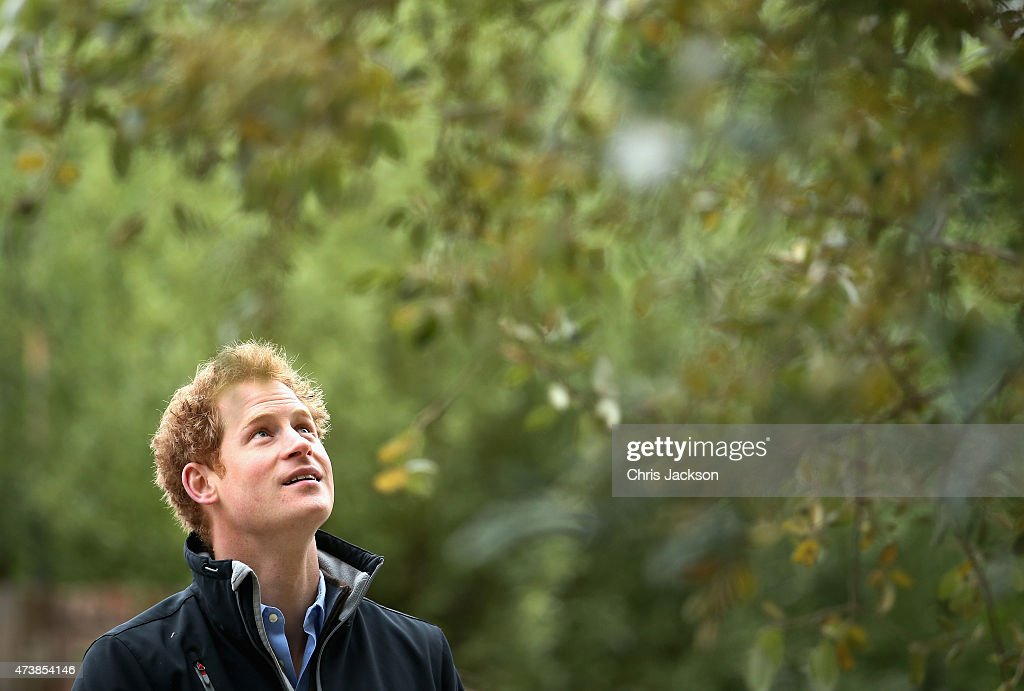 Prince Harry visits the Sentebale 'Hope In Vunerability' Garden during the annual Chelsea Flower show at Royal Hospital Chelsea on May 18, 2015 in London, England. The Sentebale - Hope In Vulnerability Garden at RHS Chelsea Flower Show was designed by Matt Keightley and is inspired by the Mamohato Children's Centre in Lesotho. The Children's Centre is due to open later this year in Lesotho and will provide support to children living wth HIV.