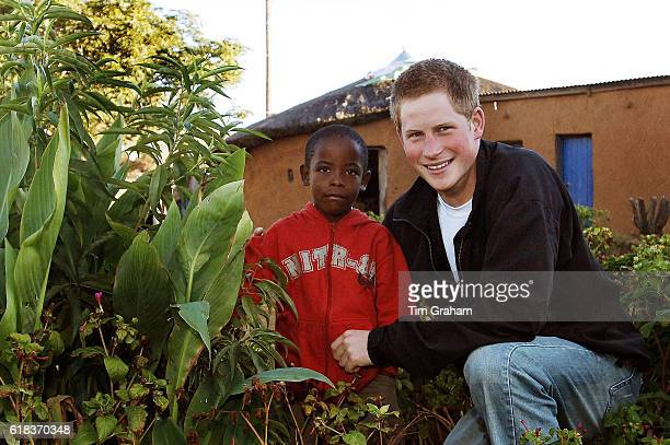 APRIL 28 2006*** Prince Harry with friend Mutsu Potsane inspect the Peach Tree that they planted in the grounds of the Mants'ase childrens home in...
