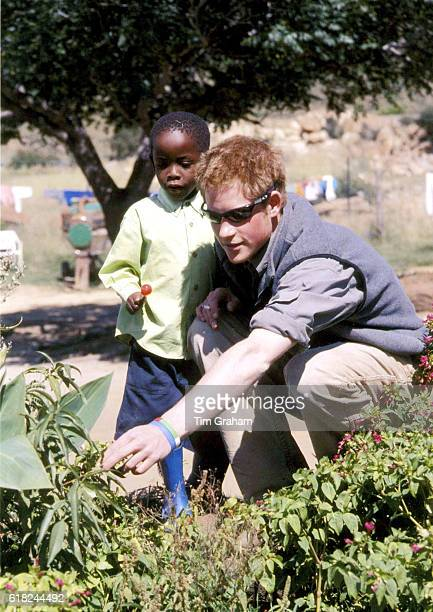 Prince Harry with Mutsu at the MantsAfe Children's Home Mohales Hoek Prince Harry has returned to Lesotho to revisit community projects he worked on...