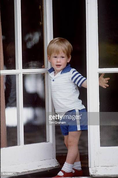 Prince Henry Peers Through The Patio Doors At Highgrove
