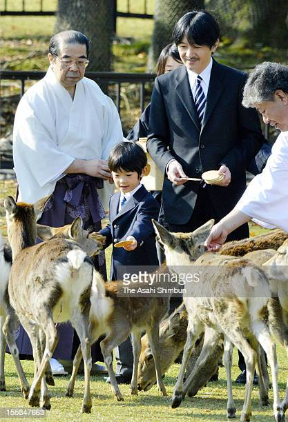 Prince Hisahito pats a deer while Prince Akishino watches during the Shikayose heading deers by blowing horn at Tobihino Field of Kasuga Taisha...