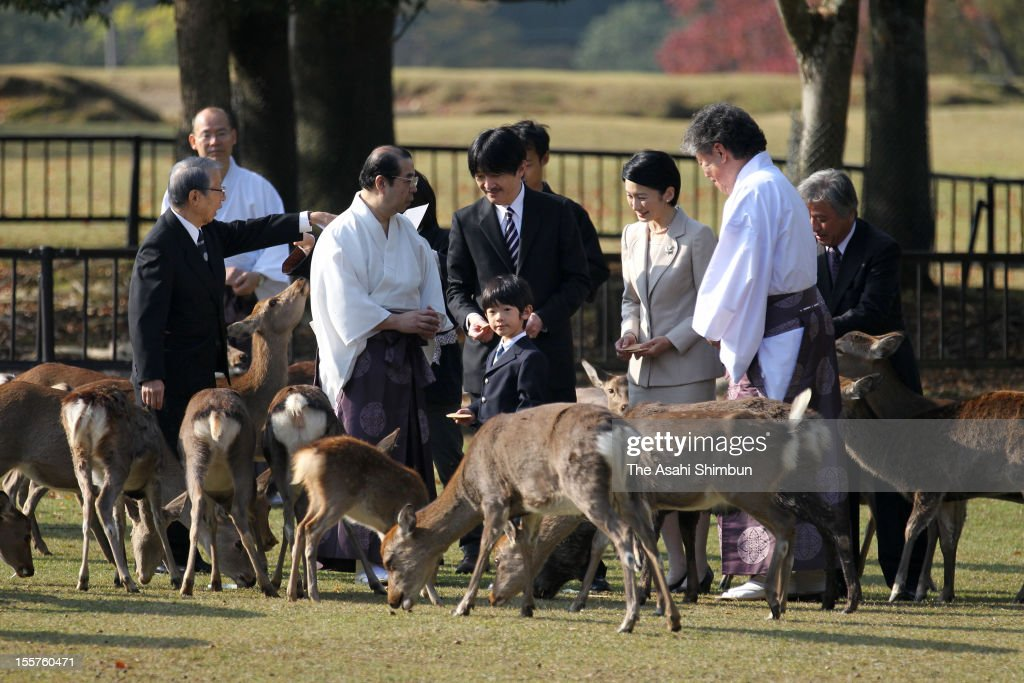 <a gi-track='captionPersonalityLinkClicked' href=/galleries/search?phrase=Prince+Hisahito&family=editorial&specificpeople=3197577 ng-click='$event.stopPropagation()'>Prince Hisahito</a>, Prince Akishino and Princess Kiko are seen during the Shikayose, heading deers by blowing horn, at Tobihino Field of Kasuga Taisha Shrine on November 8, 2012 in Nara, Japan.