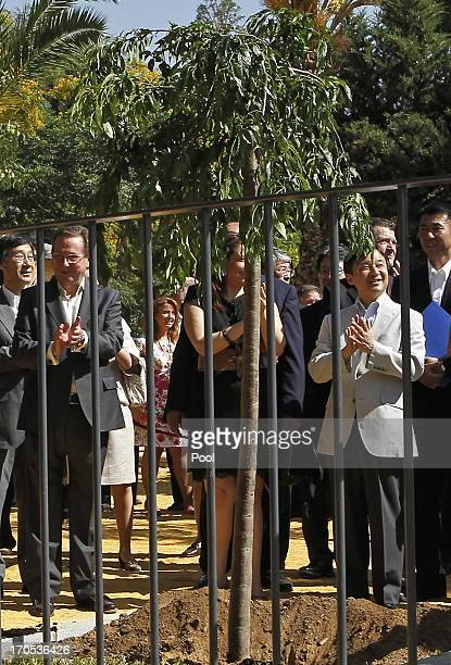 Prince Naruhito of Japan claps as he plants a cherry tree in Coria del Rio on June 14 2013 in Sevilla Spain Japanese Crown Prince Naruhito is on a...