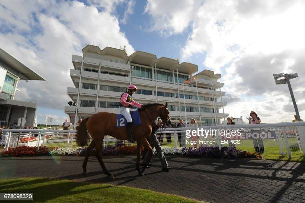 Prince of Thebes ridden by Kieren Fox in the parade ring at Epsom Downs Racecourse before the Download Epsom's Android Or Iphone App Now Apprentice...