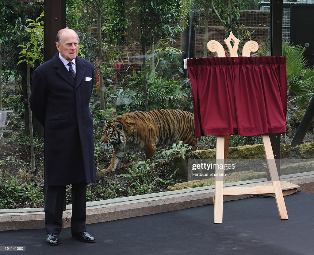 Prince Philip, Duke Of Edinburgh attends the opening of London Zoo's new Tiger Territory at ZSL London Zoo on March 20, 2013 in London, England.