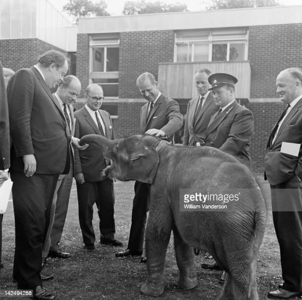 Prince Philip Duke of Edinburgh meets Kumara a 7 monthold elephant during a visit to Whipsnade Zoo Bedfordshire 19th July 1967 The Duke is visiting...