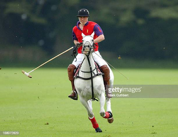 Prince William Attends The King Constantine Cup Polo Match At Cirencester Park Polo Club