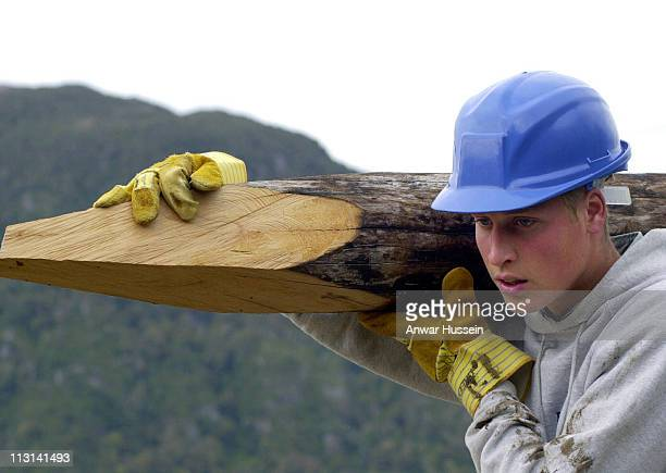 Prince William carries a log used to construct walkways linking buildings during his Raleigh International expedition on December 11 2000 in Tortel...