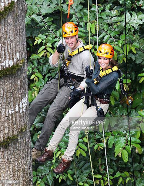 Prince William Duke of Cambride and Catherine Duchess of Cambridge abseil through the rainforest in Danum Valley Research Center in Danum Valley on...