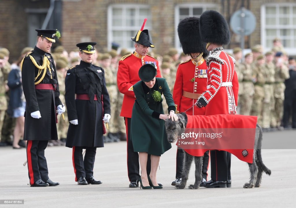 Prince William, Duke Of Cambridge and Catherine, Duchess of Cambridge presents Domnhall the Band of the Irish Guards Wolfhound Mascot with sprigs of shamrock during the annual Irish Guards St Patrick's Day Parade at Household Cavalry Barracks on March 17, 2017 in London, England.