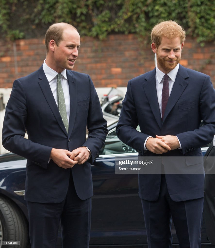 prince-william-duke-of-cambridge-and-prince-harry-visit-to-the-newly-picture-id842909888