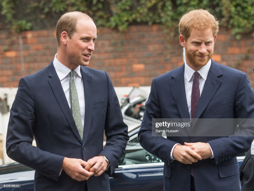 prince-william-duke-of-cambridge-and-prince-harry-visit-to-the-newly-picture-id842916544