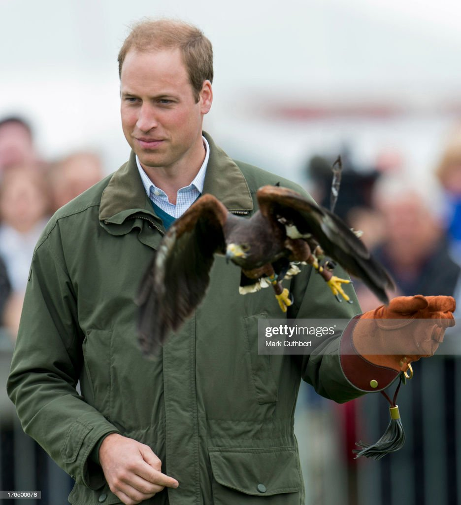 <a gi-track='captionPersonalityLinkClicked' href=/galleries/search?phrase=Prince+William&family=editorial&specificpeople=178205 ng-click='$event.stopPropagation()'>Prince William</a>, Duke of Cambridge at a birds of prey display during his visit to the Anglesey agricultural show on his first official engagement since the birth of his son Prince George of Cambridge last month at Anglesey Showground on August 14, 2013 in Bangor, Wales. <a gi-track='captionPersonalityLinkClicked' href=/galleries/search?phrase=Prince+William&family=editorial&specificpeople=178205 ng-click='$event.stopPropagation()'>Prince William</a> had two weeks parental leave from work as a RAF rescue helicopter pilot in Anglesey.