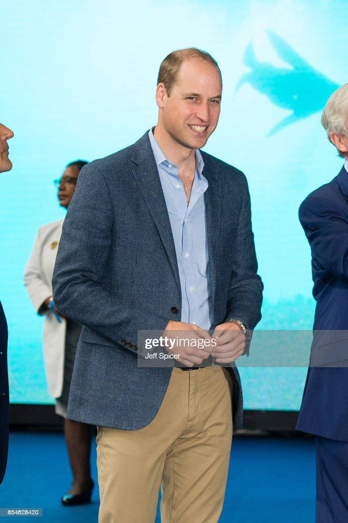 Prince William, Duke of Cambridge attends the World Premiere of 'Blue Planet II' on September 27, 2017 in London, United Kingdom.