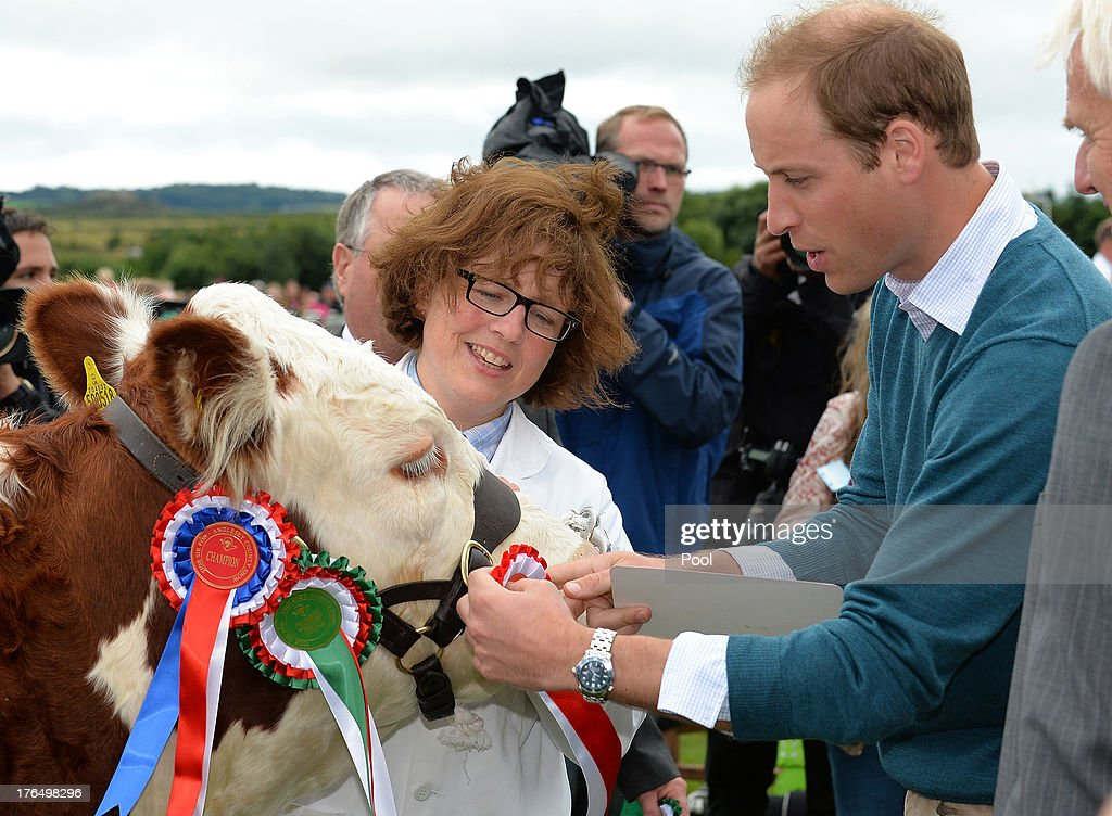 <a gi-track='captionPersonalityLinkClicked' href=/galleries/search?phrase=Prince+William&family=editorial&specificpeople=178205 ng-click='$event.stopPropagation()'>Prince William</a>, Duke of Cambridge awards a rosette during his visit at Anglesey agricultural show on his first official engagement since the birth of his son Prince George of Cambridge last month at Anglesey Showground on August 14, 2013 in Bangor, Wales. <a gi-track='captionPersonalityLinkClicked' href=/galleries/search?phrase=Prince+William&family=editorial&specificpeople=178205 ng-click='$event.stopPropagation()'>Prince William</a> had two weeks parental leave from work as a RAF rescue helicopter pilot in Anglesey.