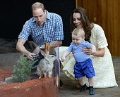 Prince William Duke of Cambridge Catherine Duchess of Cambridge and Prince George of Cambridge meet a Bilby called George as they visit the Bilby...