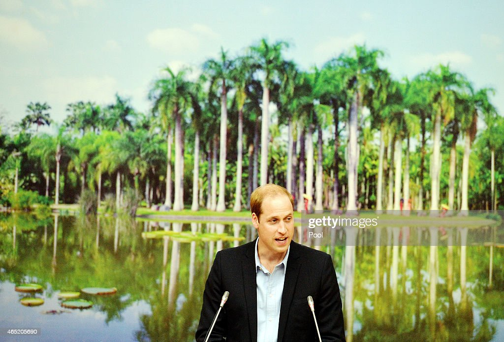 <a gi-track='captionPersonalityLinkClicked' href=/galleries/search?phrase=Prince+William&family=editorial&specificpeople=178205 ng-click='$event.stopPropagation()'>Prince William</a>, Duke of Cambridge delivers a speech about the illegal wildlife trade, at the Botanical Gardens on March 4, 2015 in Xishuangbanna, China. <a gi-track='captionPersonalityLinkClicked' href=/galleries/search?phrase=Prince+William&family=editorial&specificpeople=178205 ng-click='$event.stopPropagation()'>Prince William</a>, Duke of Cambridge is on a four day visit to China. He is the most senior royal to visit China since the Queen and Duke of Edinburgh in 1986. His visit follows on from a successful four day visit to Japan.
