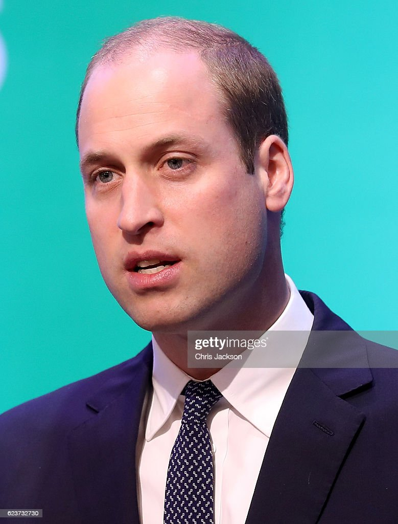 prince-william-duke-of-cambridge-gives-a-speech-as-he-attends-the-3rd-picture-id623732730