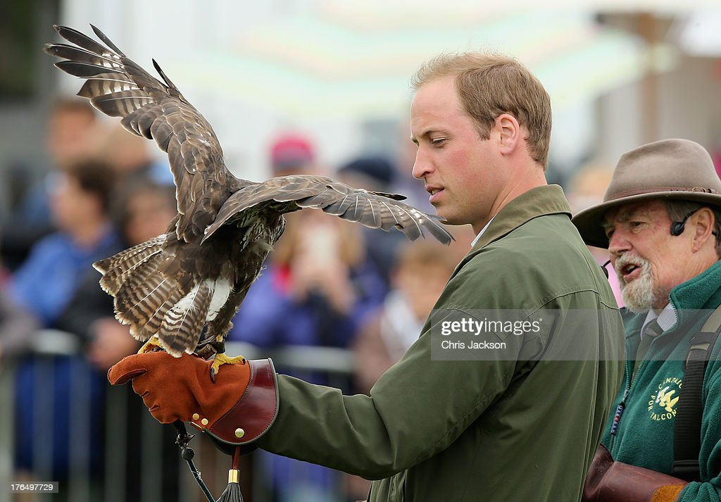 <a gi-track='captionPersonalityLinkClicked' href=/galleries/search?phrase=Prince+William&family=editorial&specificpeople=178205 ng-click='$event.stopPropagation()'>Prince William</a>, Duke of Cambridge holds a bird of prey during his visit at Anglesey agricultural show on his first official engagement since the birth of his son Prince George of Cambridge last month at Anglesey Showground on August 14, 2013 in Bangor, Wales. <a gi-track='captionPersonalityLinkClicked' href=/galleries/search?phrase=Prince+William&family=editorial&specificpeople=178205 ng-click='$event.stopPropagation()'>Prince William</a> had two weeks parental leave from work as a RAF rescue helicopter pilot in Anglesey.