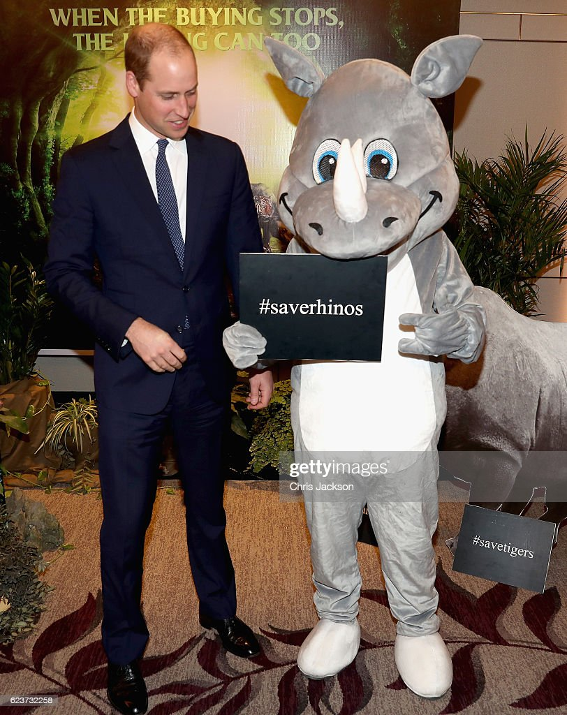 prince-william-duke-of-cambridge-meets-a-rhino-as-he-attends-the-3rd-picture-id623732258