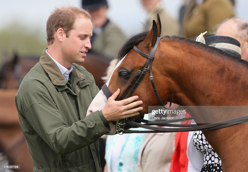 <a gi-track='captionPersonalityLinkClicked' href=/galleries/search?phrase=Prince+William&family=editorial&specificpeople=178205 ng-click='$event.stopPropagation()'>Prince William</a>, Duke of Cambridge pats a horse during his visit at Anglesey agricultural show on his first official engagement since the birth of his son Prince George of Cambridge last month at Anglesey Showground on August 14, 2013 in Bangor, Wales. <a gi-track='captionPersonalityLinkClicked' href=/galleries/search?phrase=Prince+William&family=editorial&specificpeople=178205 ng-click='$event.stopPropagation()'>Prince William</a> had two weeks parental leave from work as a RAF rescue helicopter pilot in Anglesey.