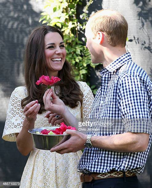 Prince William Duke of Cambridge presents Catherine Duchess of Cambridge with a flower in the tree kangaroo enclosure at Taronga Zoo on April 20 2014...