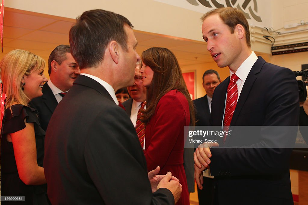 Prince William, Duke of Cambridge, Vice Patron of the Welsh Rugby Union, attends the Autumn International rugby match between Wales and New Zealand at the Millennium Stadium, Cardiff on November 24, 2012 in Cardiff, Wales.