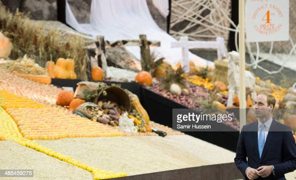 Prince William Duke of Cambridge visits the Sydney Royal Easter Show on April 18 2014 in Sydney Australia The Duke and Duchess of Cambridge are on a...